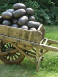 Wilfred Pritchard, A Load of Bollocks, Bronze Testicles, All signed and numbered 1-28 Teak Cart, Unique, £6-8k160