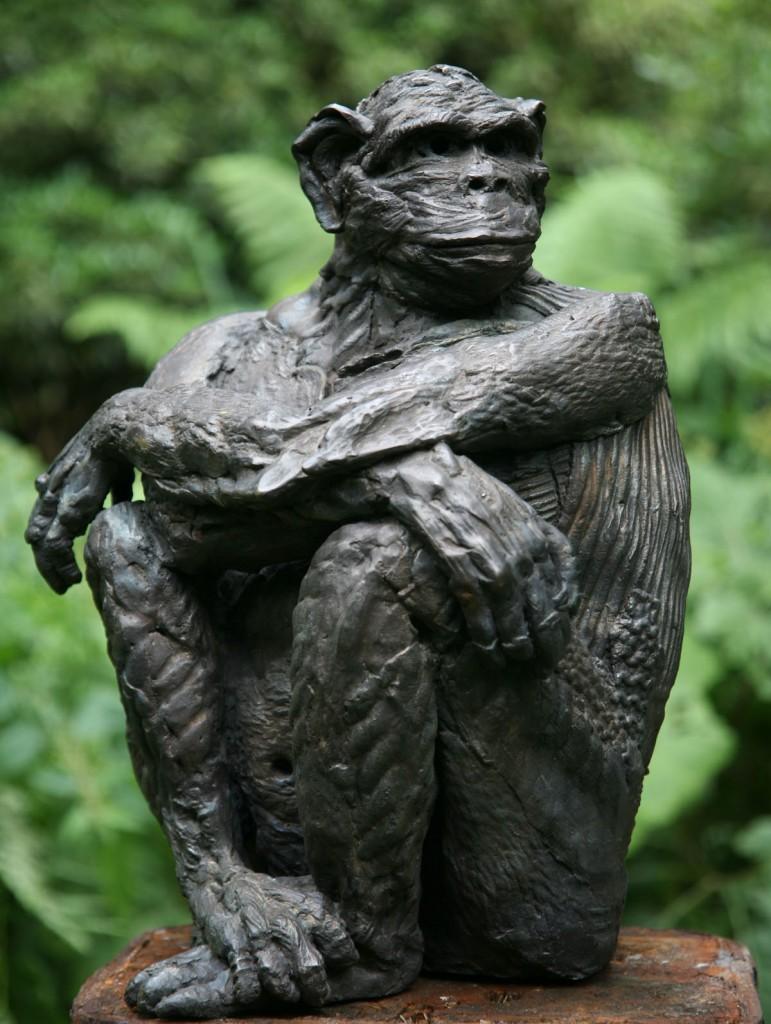 marjan wouda, ape glancing sideways, bronze
